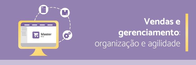 vendas-e-gerenciamento-organizacao-e-agilidade---Alternativa-Sistemas